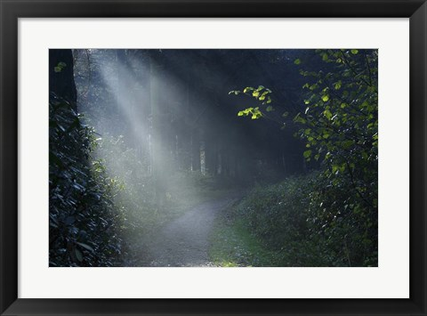 Framed Beam of Light Print