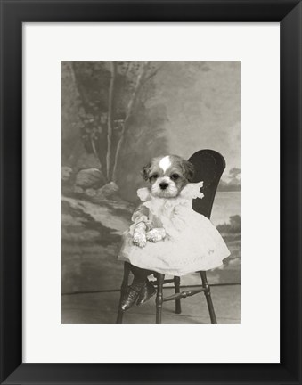 Framed Dog Series #5 Print