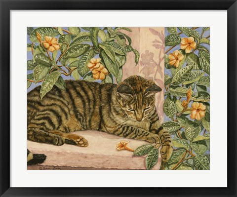 Framed Caribbean Cat Print