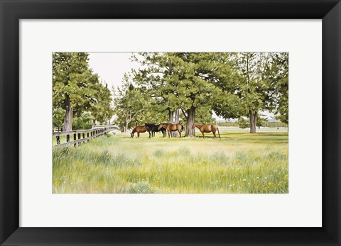 Framed Juniper Valley Print