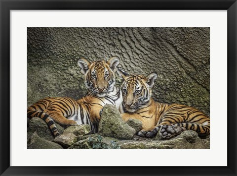 Framed Brothers Twosome Print