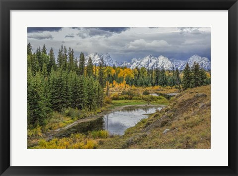 Framed Gtnp Fall Color With Mountains Print