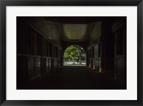 Framed Horse Farm Barn (Inside And Out) Print