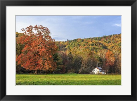Framed Little House In The Fall Print