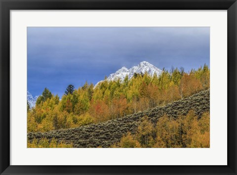 Framed Mountain Fall Color Print