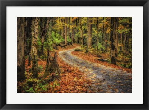 Framed Path In Greenbrier Watercolor Print