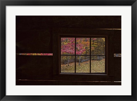 Framed Roaring Fork Cabin Window Print