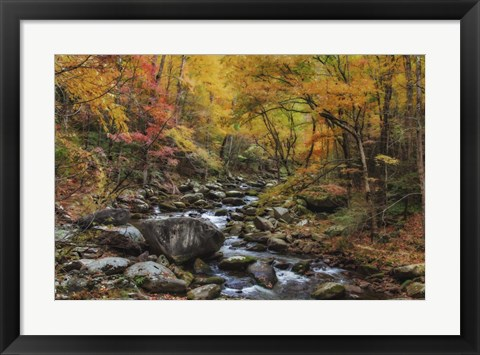 Framed Tremont Stream Watercolor Print