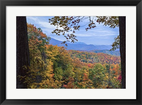 Framed Window To The Smoky Mountains Print