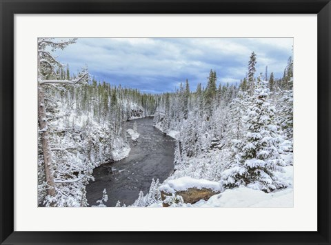 Framed Yellowstone Winter In Fall Print
