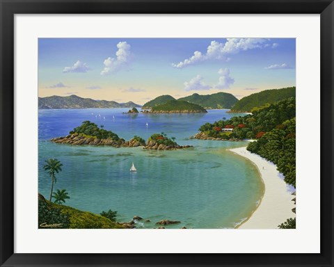 Framed Trunk Bay - Virgin Islands Print