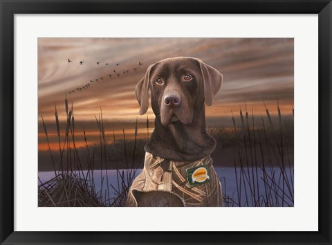 Framed Chocolate Lab In The Sunset Print