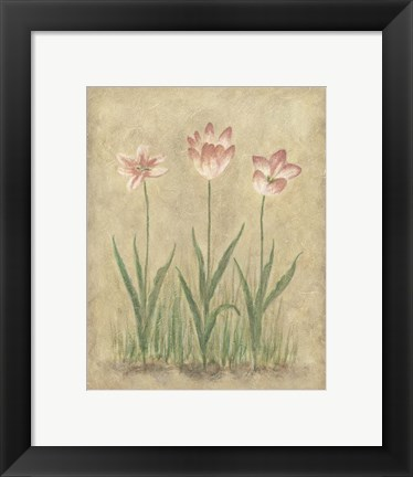 Framed Blooming Tulips I Print