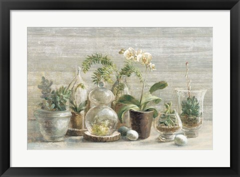 Framed Greenhouse Orchids on Wood Print