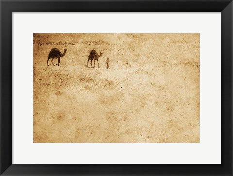 Framed Two Camels and Traveler in Desert Print