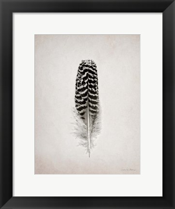 Framed Feather I BW Print