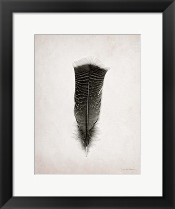 Framed Feather III BW Print