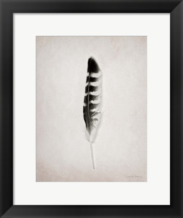 Framed Feather IV BW Print