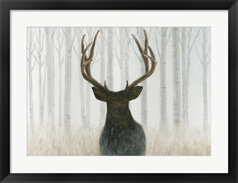 Framed Into the Forest Print