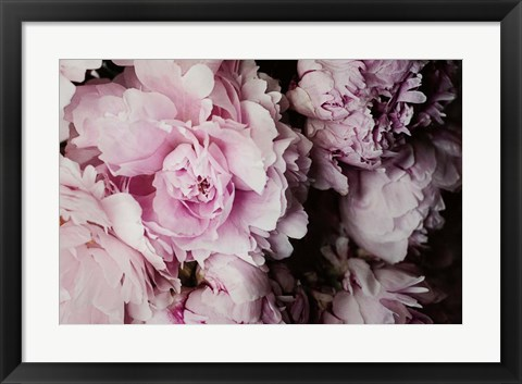 Framed Peonies Galore I Print