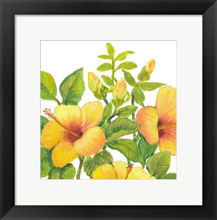 Framed Watercolor Hibiscus I Print