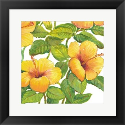 Framed Watercolor Hibiscus IV Print
