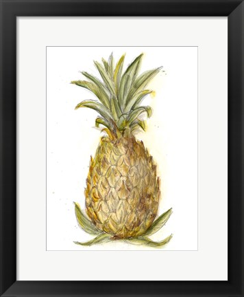Framed Pineapple Sketch I Print
