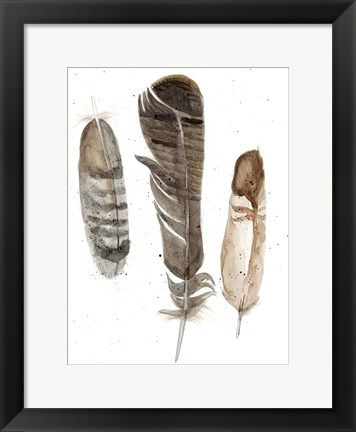 Framed Earthtone Feathers I Print