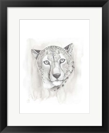 Framed Big Cat Study I Print