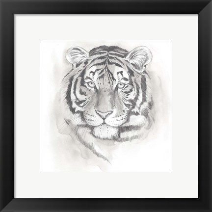 Framed Big Cat Study II Print