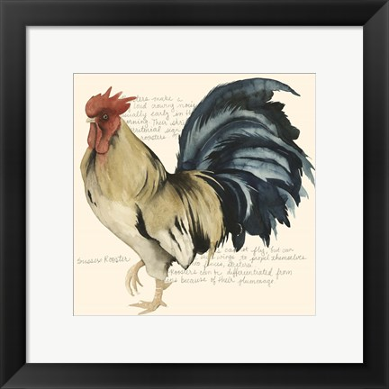 Framed Rooster's Crow II Print