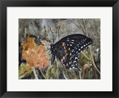 Framed Butterfly in Nature IV Print