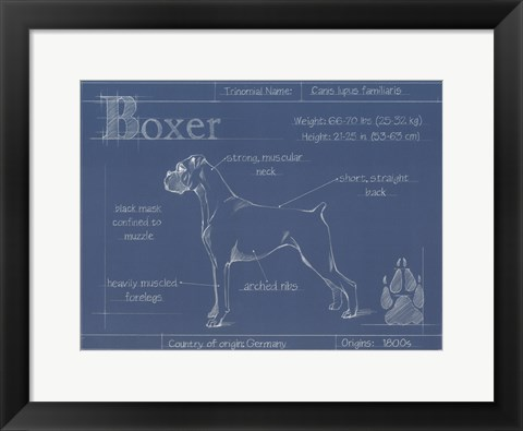 Blueprint Boxer Artwork By Ethan Harper At