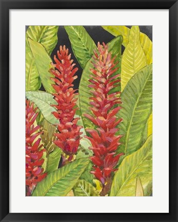 Framed Red Tropical Flowers II Print