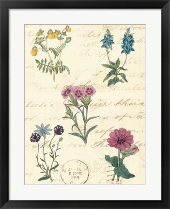 Framed Botanical Journal III Print