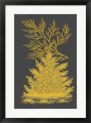 Framed Trees & Leaves II Print