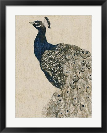 Framed Textured Peacock II Print