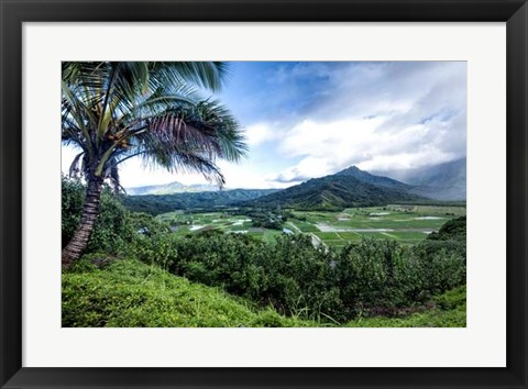 Framed Hanalei Valley Print