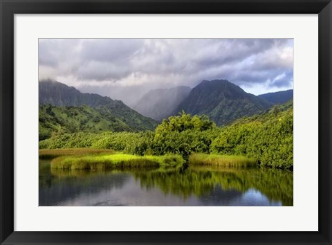 Framed Coastal Marsh IV Print