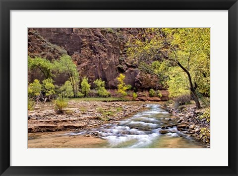 Framed Zion Autumn I Print