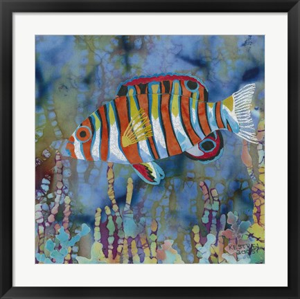 Framed Harlequin Tusk Fish Print