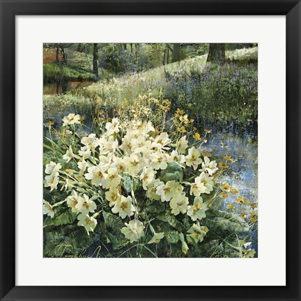 Framed Primroses in Water Print