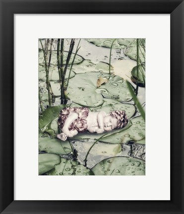 Framed Sleeping on Lily Pads Print