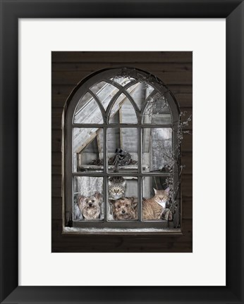Framed Bird Watchers Print
