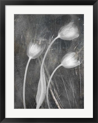Framed 3 Tulipanes Con Red Bn Scratch Print