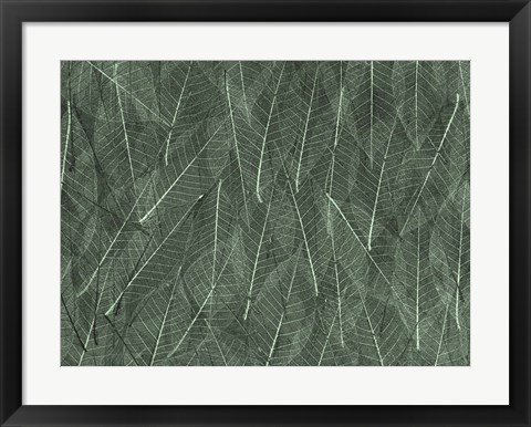 Framed Leaves 1 Green Print