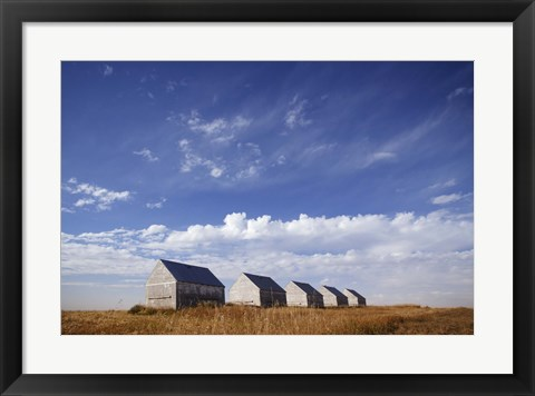 Framed Abandoned Sheds in a Wheat Field Print