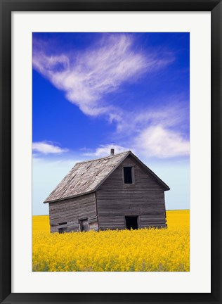 Framed Grey Paneled Barn in Yellow Flowers Print