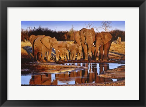 Framed Savute Evening Print