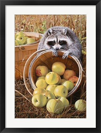 Framed Apple Harvest Print